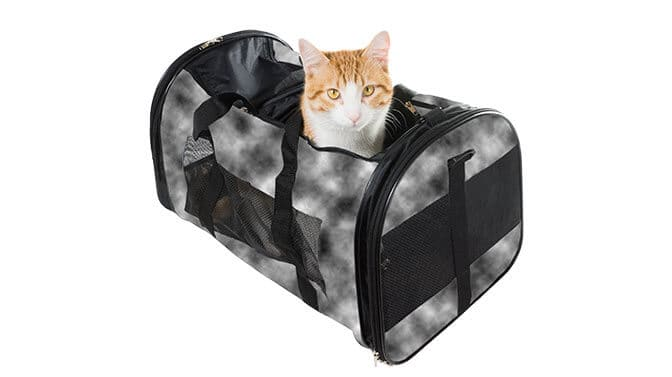 are soft sided cat carriers safe
