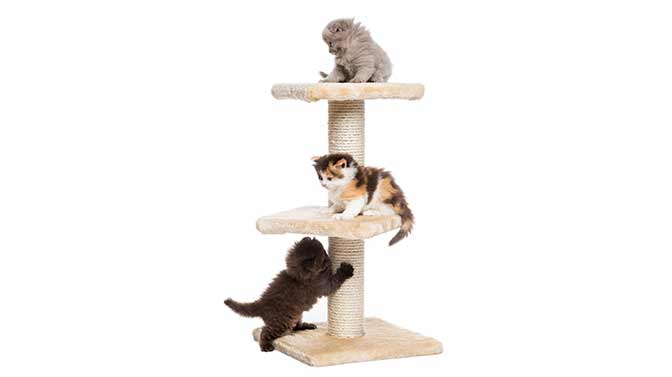 are cat trees supposed to wobble
