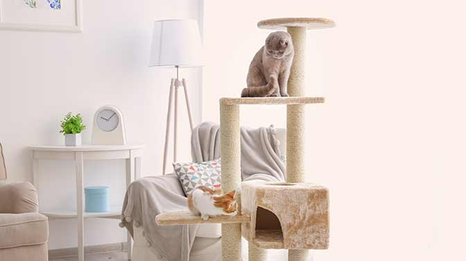 what to do with an old cat tree